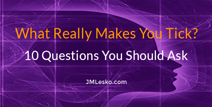 What really makes you tick 10 Questions bu jm lesko