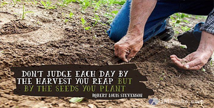 man planting seeds image for j m lesko wallpaper Judge By the Seeds You Plant Not the Harvest